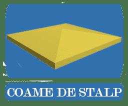 COAME DE STALP